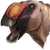 """Phát hiện khủng long mỏ vịt """"dị"""" nhất lịch sử"""