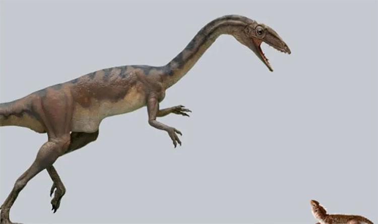 Một loài khủng long mới vừa được các nhà khoa học phát hiện sau nhiều năm xác định.