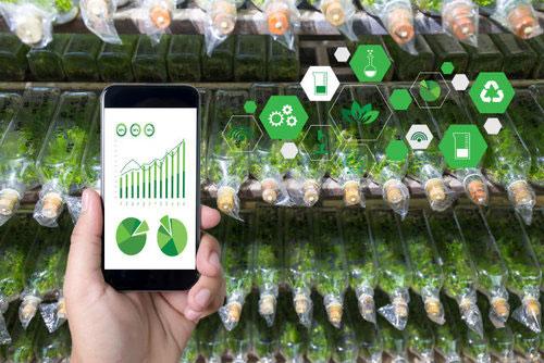 NatureFresh phân tích thông tin cây trồng trên quy mô lớn để đưa ra dự báo thu hoạch và năng suất chính xác