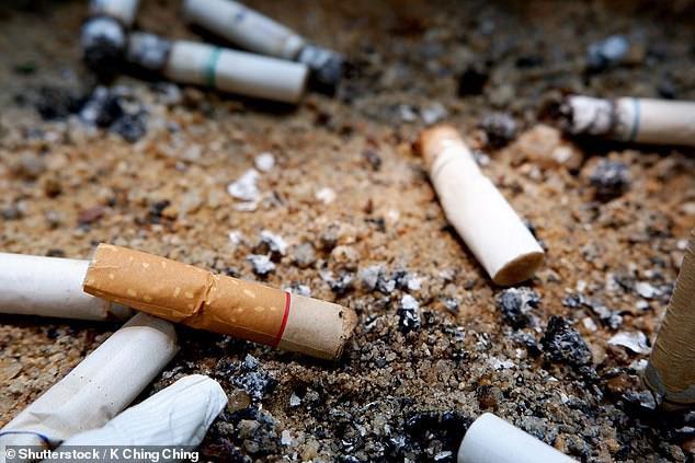 Nguyên liệu khiến đầu lọc thuốc lá trở nên nguy hiểm là cellulose acetate