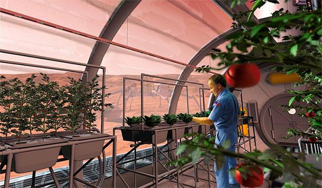 Trong tương lai, con người có thể phát triển những ốc đảo đủ khả năng duy trì sự sống và trồng trọt trên sao Hỏa.