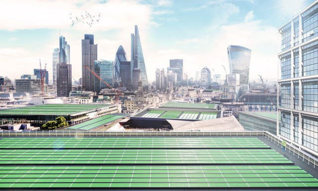 Các mái nhà được phủ bằng lá quang sinh học công nghệ BioSolar Leaf.