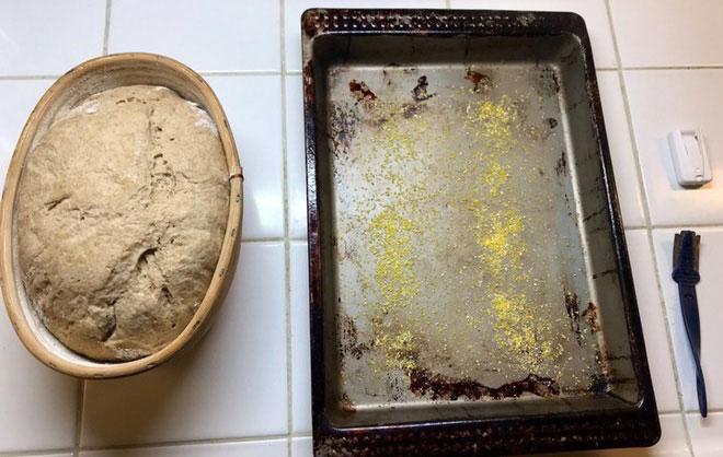 Nhào bột và nướng