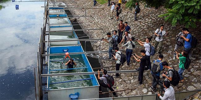 Ông Jun Kubo trực tiếp xuống bể nước đã qua xử lý trước sự chứng kiến của hàng trăm người.