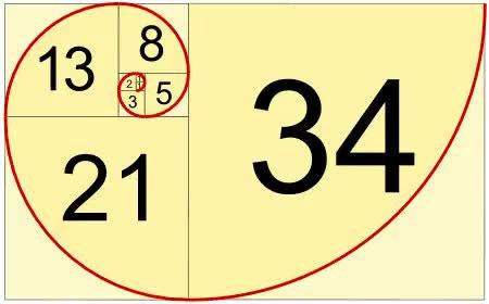 Một hình xoắn ốc thể hiện dãy số Fibonacci: 2,3,5,8,12,21,34...