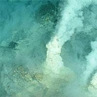 Vén bức màn bí ẩn về các dãy núi lửa ngầm dưới đáy Biển San Hô