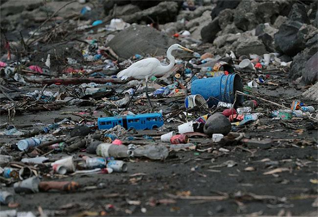 Rác thải chất đống ở một bãi biển tại thành phố Panama.