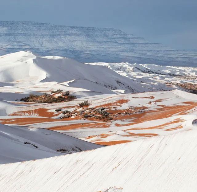 Tuyết rơi trên sa mạc