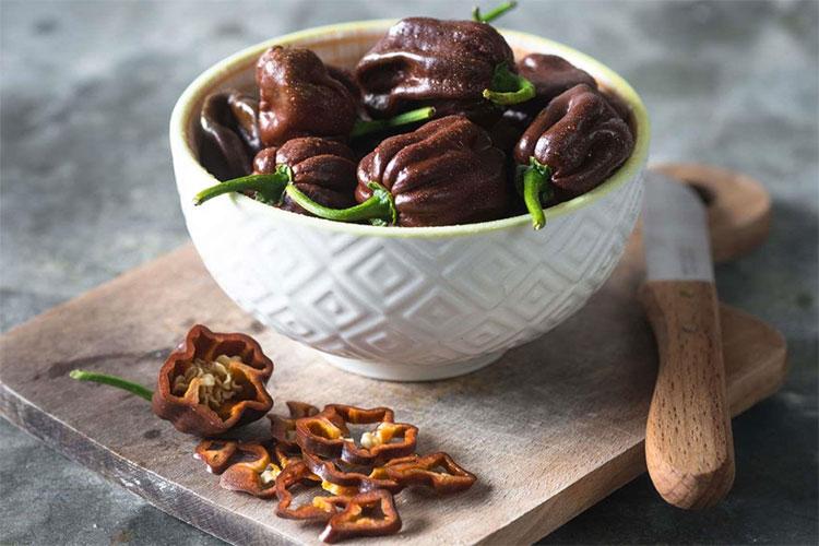 Ớt Chocolate Habanero (Mỹ)