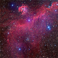 Các nhà thiên văn học chụp được ảnh chòm sao hình chim hải âu