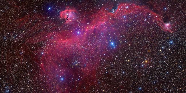 """Đám mây khí Sh2-296 tạo thành """"đôi cánh"""", trải dài trên khoảng cách 100 năm ánh sáng."""
