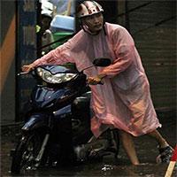 Dự báo thời tiết hôm nay: Miền Bắc nhiều nơi mưa to
