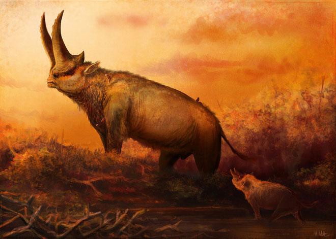 Arisinoitherium là một loài động vật ăn cỏ đã tuyệt chủng, giống với tê giác sống trong thời gian cuối Eocene và đầu Oligocene