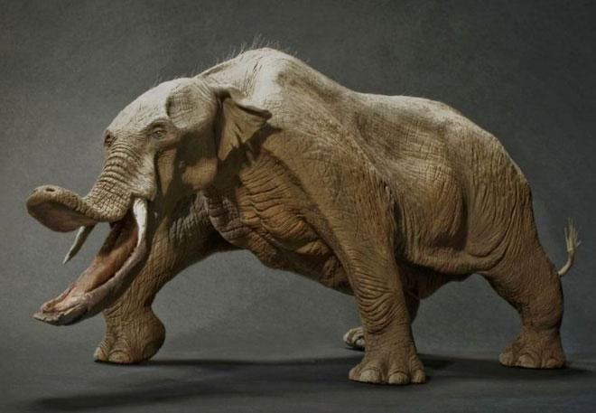 Điểm khác biệt lớn nhất giữa loài Platybelodon và loài voi hiện nay là nó có một chiếc vòi hình cái xẻng xúc đất.