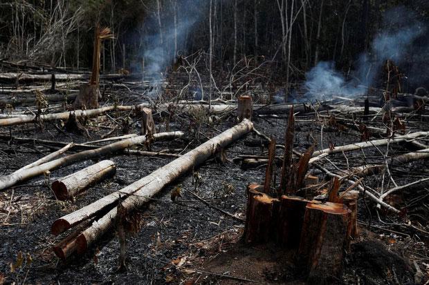 Cháy ở Novo Airao - cũng thuộc bang Amazonas - hôm 21/8