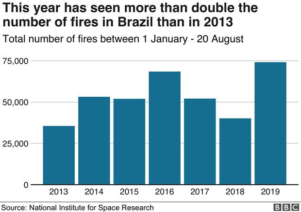 Năm 2019 chứng kiến số vụ cháy rừng ở Brazil tăng đột biến, hơn gấp đôi so với năm 2013