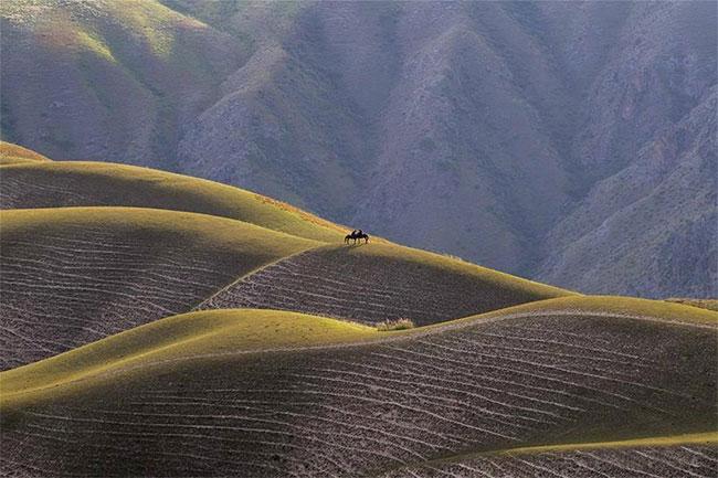 Cưỡi ngựa trên thảo nguyên luôn là khám phá, trải nghiệm khó quên với du khách.