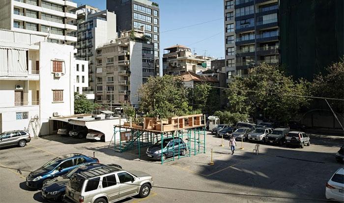 Urban Hives
