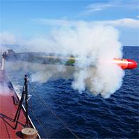 """Bộ đôi ngư lôi """"khủng"""" của Hải quân Việt Nam đáng gờm đến mức nào?"""