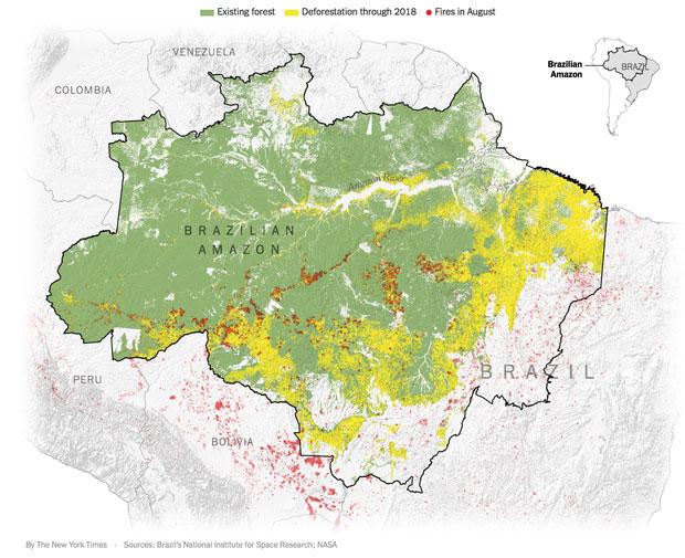 Màu vàng là các khoảng rừng bị chặt hạ trong năm 2018, và màu đỏ là nơi cháy rừng kể từ tháng 8.