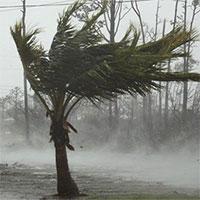 """Sức gió tới 300km/h, siêu bão """"quái vật"""" Dorian vẫn hầu như đứng yên"""