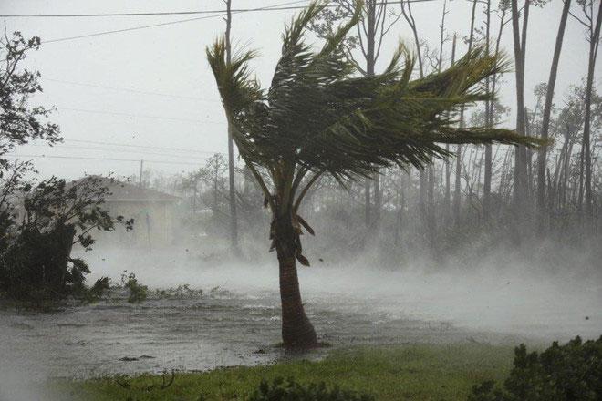Bão Dorian đã gây thiệt hại lớn ở Bahamas, nhất là vì nó không di chuyển.