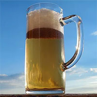 Tìm thấy bia tươi 500 tuổi trong vụ đắm tàu thời Trung Cổ