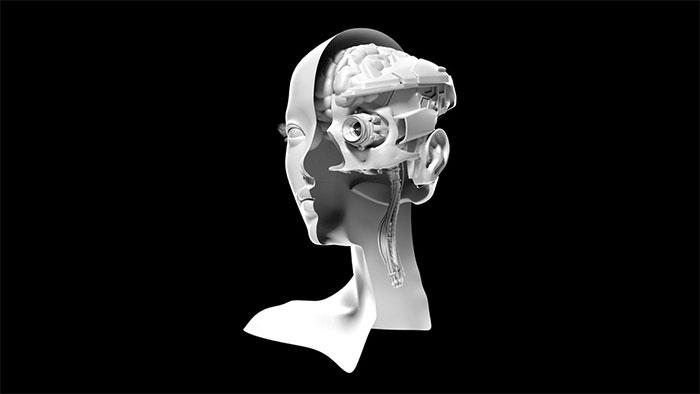 Một mô phỏng não bộ chiến binh của Mỹ.