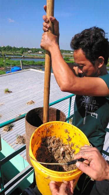 Các nhà nghiên cứu đang trộn bùn ao và rác thải.