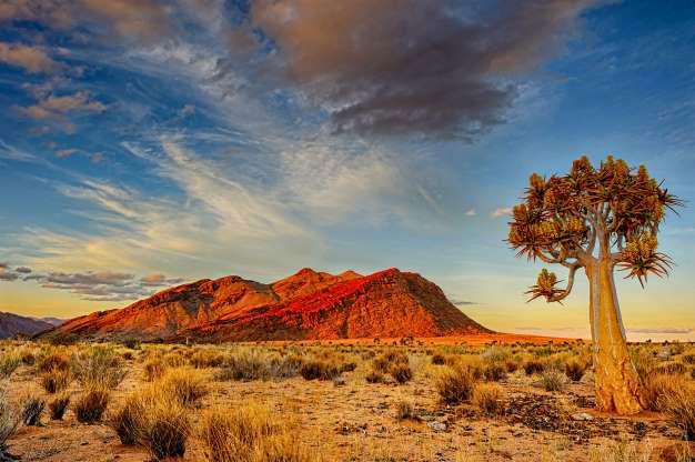 Sa mạc Kalahari