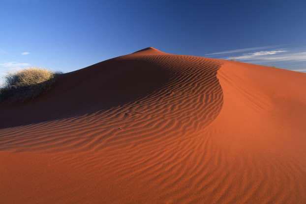 Sa mạc Simpson
