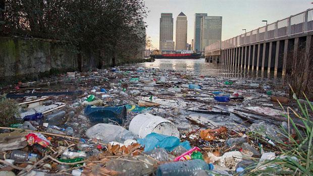 Sông Thames những ngày bị ô nhiễm.