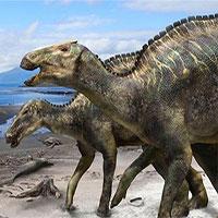 Phát hiện loài khủng long mỏ vịt mới