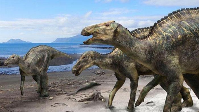 Đồ họa mô phỏng loài Kamuysaurus japonicus.