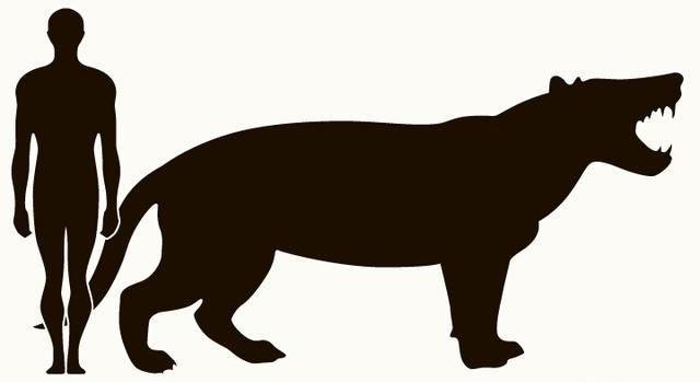 Loài thú tiền sử được các nhà khoa học xác định đặt tên là Simbakubwa kutokaafrik