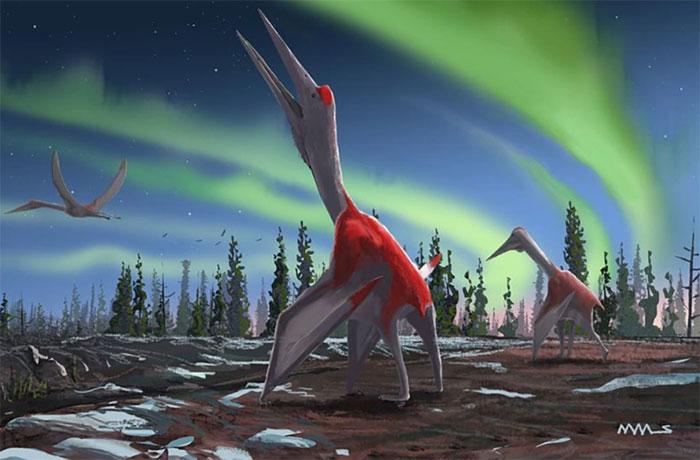 Hình ảnh mô tả loài khủng long mới được phát hiện.