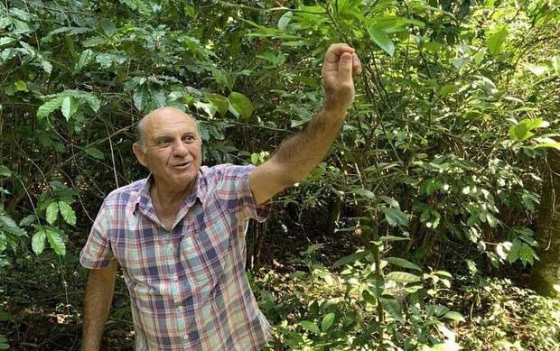 Ông João Neto - nông dân sở hữu trang trại cafe kiến