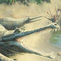Hóa thạch kỷ Jura tiết lộ loài cá sấu mõm dài mới