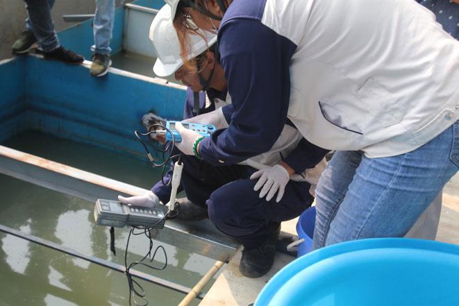 Cũng trong sáng nay, cơ quan chuyên môn đã tiến hành lấy mẫu nước để mang về xét nghiệm