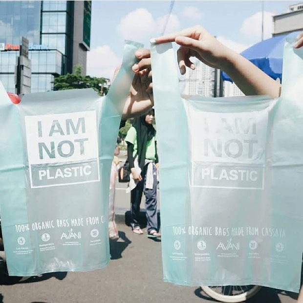 Chiếc túi này bền, giá thành phải chăng và quan trọng là có thể vứt bỏ mà không gây hại môi trường.