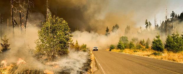 Thủ phạm chính khiến Trái đất nóng lên chính là lượng khí CO2 (carbon dioxide) ngày tăng cao.