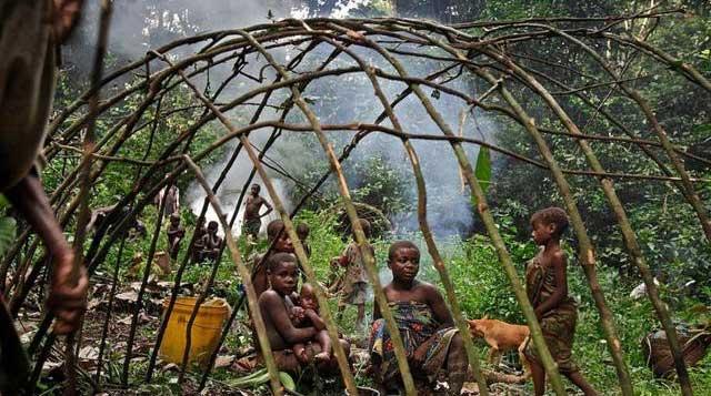 Bộ tộc Pygmy chỉ săn bắt đủ để sử dụng trong một tháng mỗi lần,