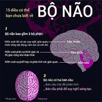 15 sự thật khó tin về não bộ