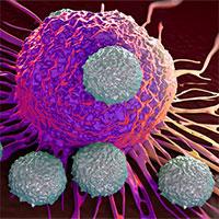 """Tìm ra cơ chế khiến bệnh ung thư """"né"""" được hoá trị"""