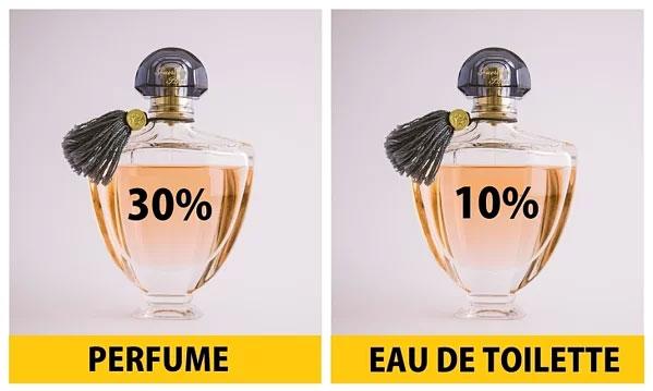 Perfume thường chứa tới 30% tinh chất nước hoa trong khi Eau de Toilette chỉ chứa 10%.