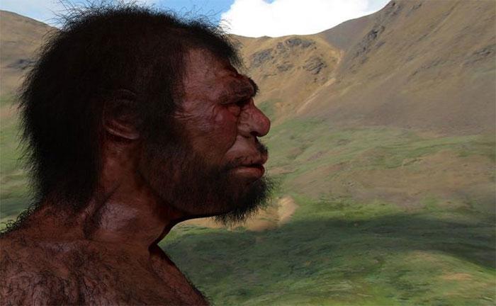 Nhiều người trong chúng ta mang dòng máu lai Denisovans so với loài Homo sapiens