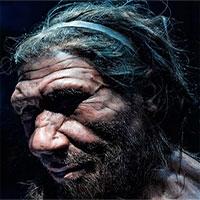 Căn bệnh phổ biến ở trẻ em có thể là nguyên nhân khiến người Neanderthal tuyệt chủng