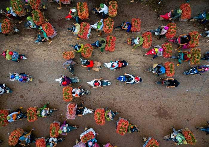 Cảnh tấp nập người mua bán vải thiều sau vụ mùa thu hoạch tại miền bắc Việt Nam