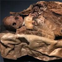 Những xác ướp 500 năm tuổi còn nguyên da