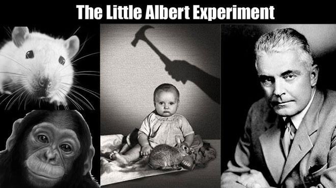 """Thí nghiệm """"Albert bé nhỏ"""" sau đó đã gây ra những cuộc phản biện rộng rãi chủ yếu là về đạo đức của thí nghiệm."""